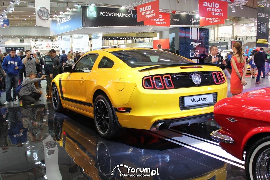 Ford Mustang BOSS 302, tył