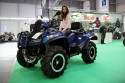 Quad, Arctic CAT