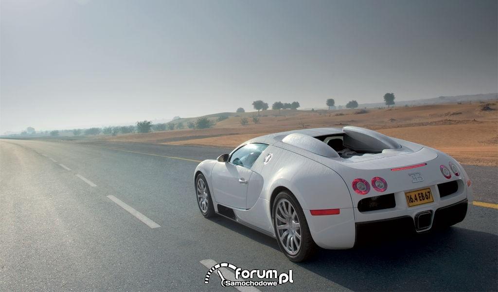 Bugatti 16.4 Veyron 5
