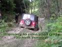Kajmany pomagają przejechać