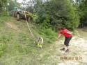 Koza pomaga nawet w off-roadzie