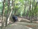 Off-road w gęstym lesie