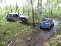 Samochody w terenie leśnym