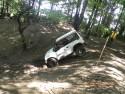 Suzuki Vitara w terenie leśnym