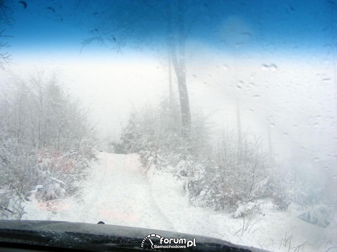Szlak zimowy i przeprawowy, Wisła zimą