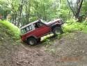Toyota Land Cruiser w leśnym off-roadzie