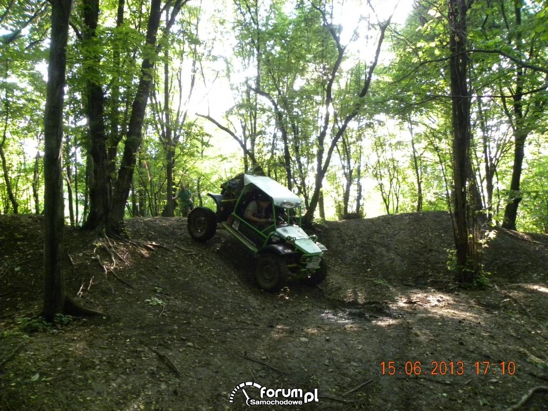 W terenie leśnym