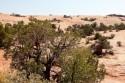Wyprawa do Moab 2012, 58