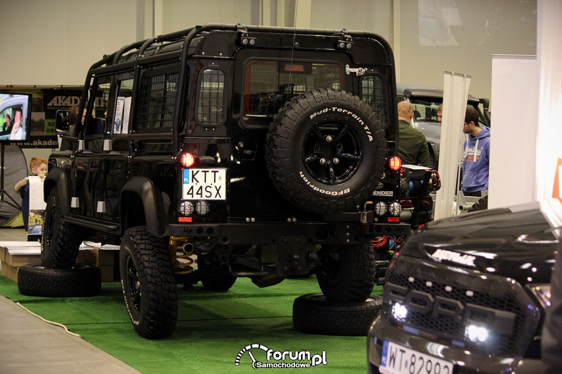 Land Rover Defender, tył
