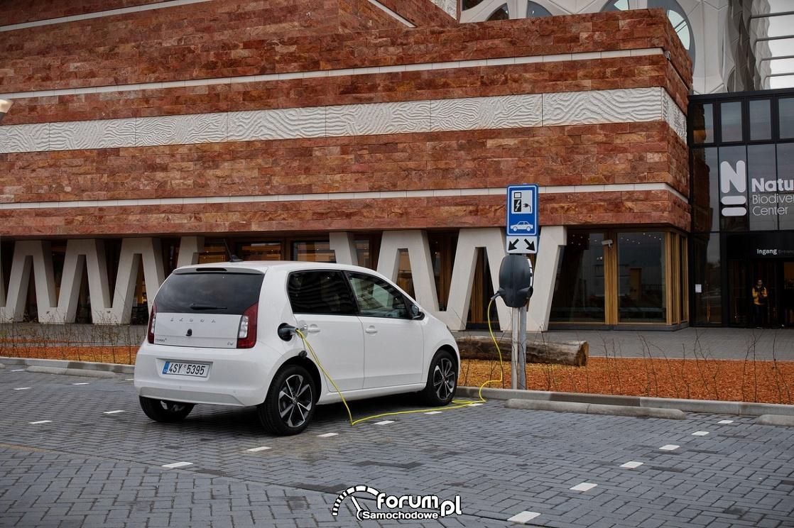 Świat samochodów elektrycznych i hybrydowych według Skody