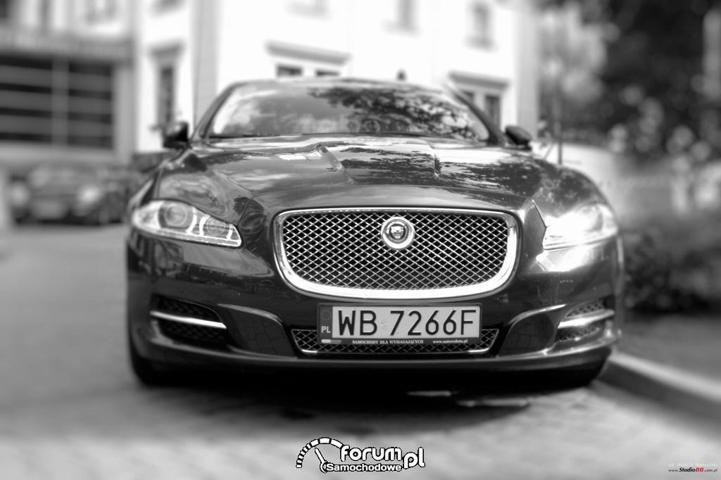 Jaguar XJ, przód