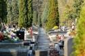 Cmentarz, groby