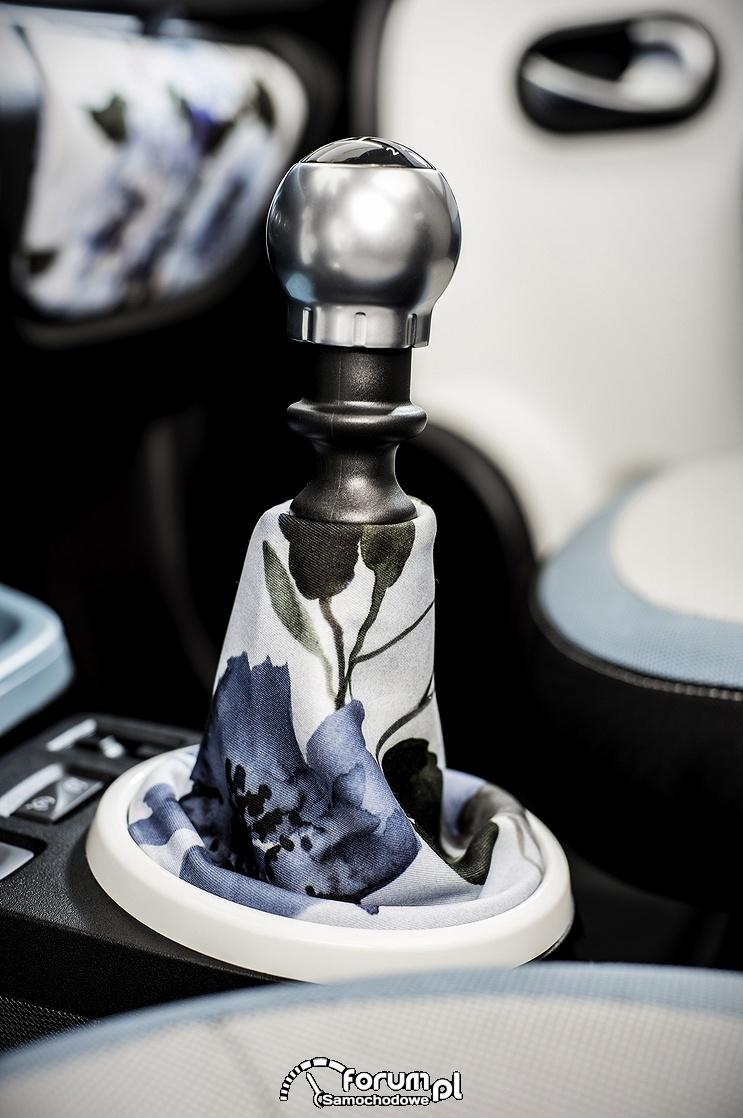 Drążek zmiany biegów, Renault Twingo Bizuu