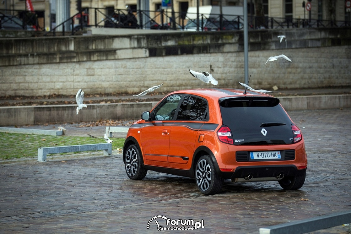 Renault Twingo Sport GT, ptaki