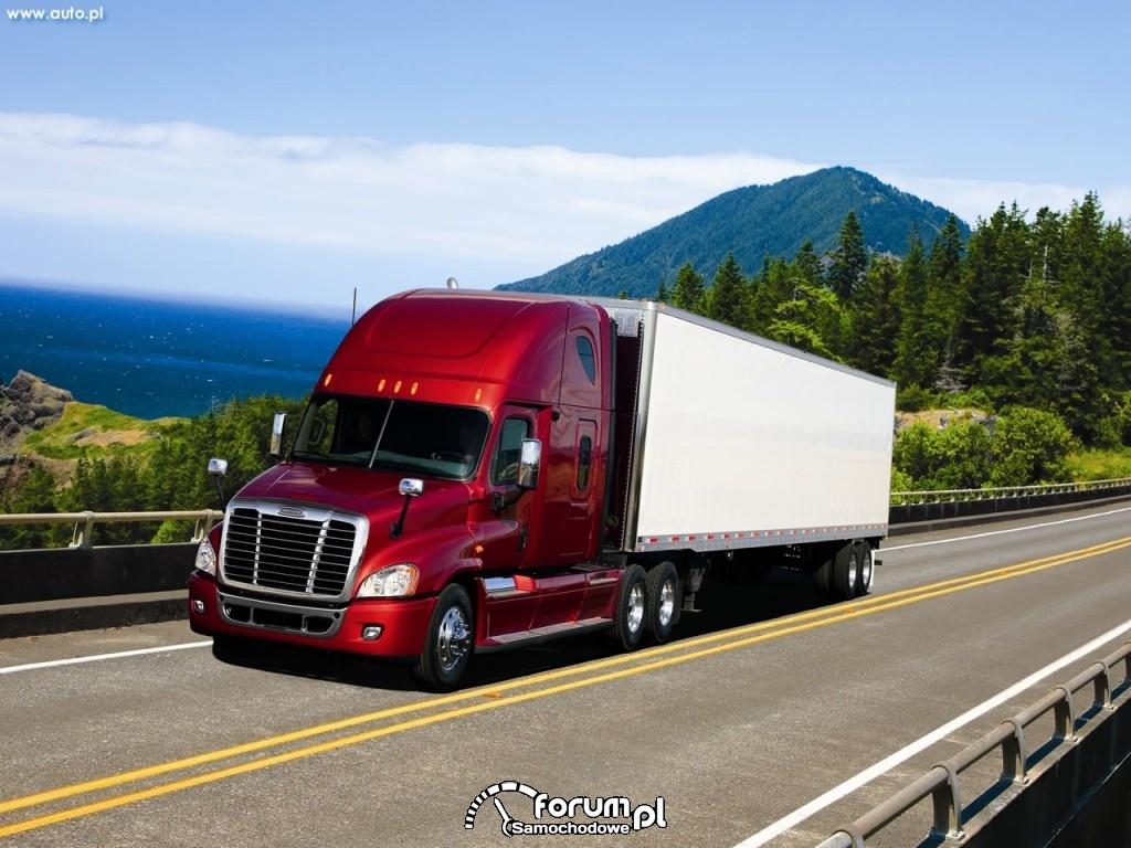 Freightliner Cascadia zdjęcie : Samochody dostawcze