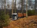 Scania - transport drewna