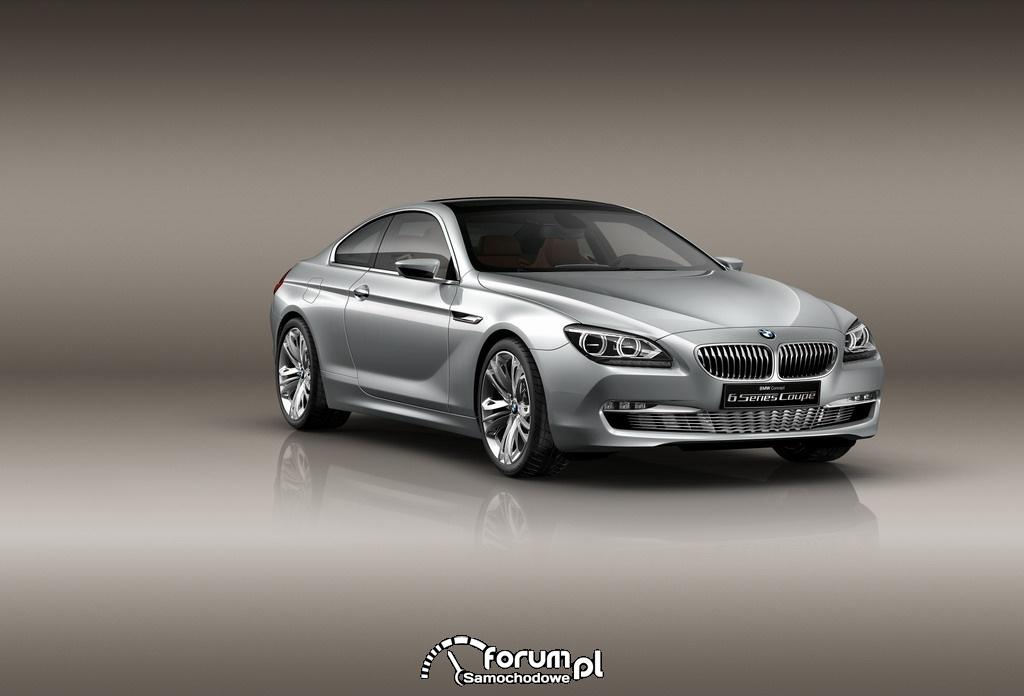 The BMW Concept 6 Series Coupé, 2010