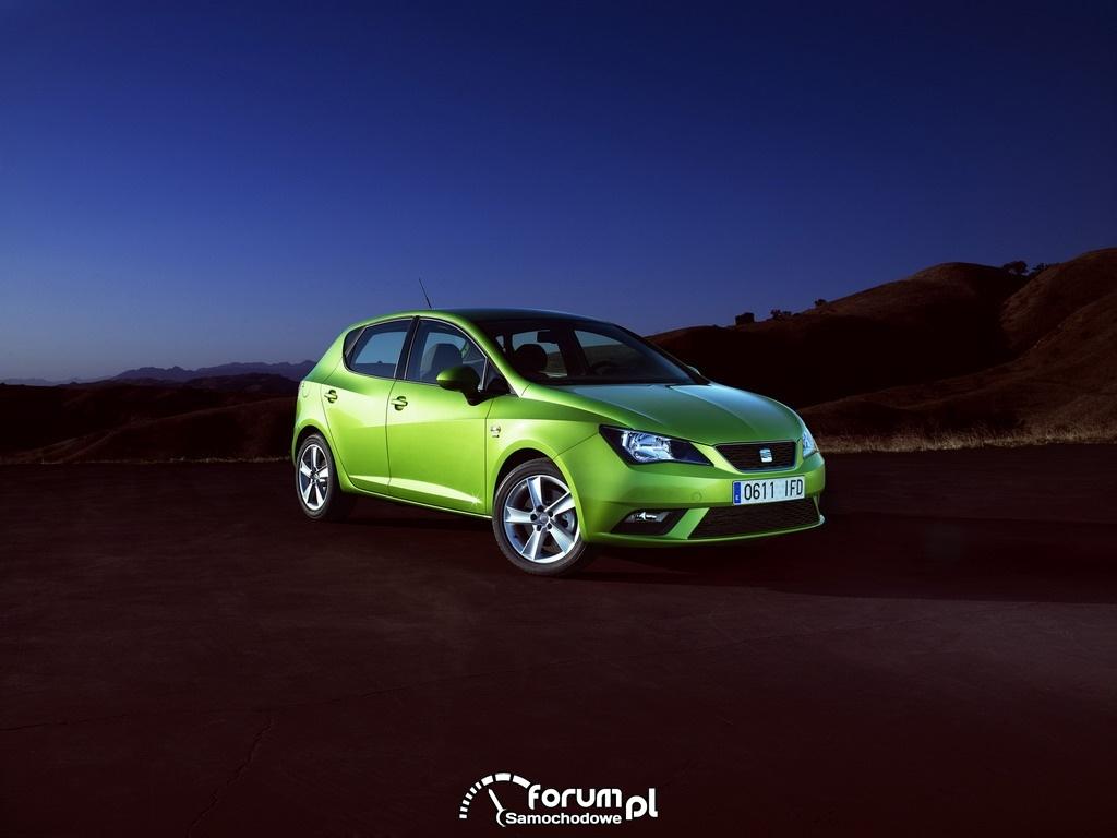 SEAT Ibiza 2012 1
