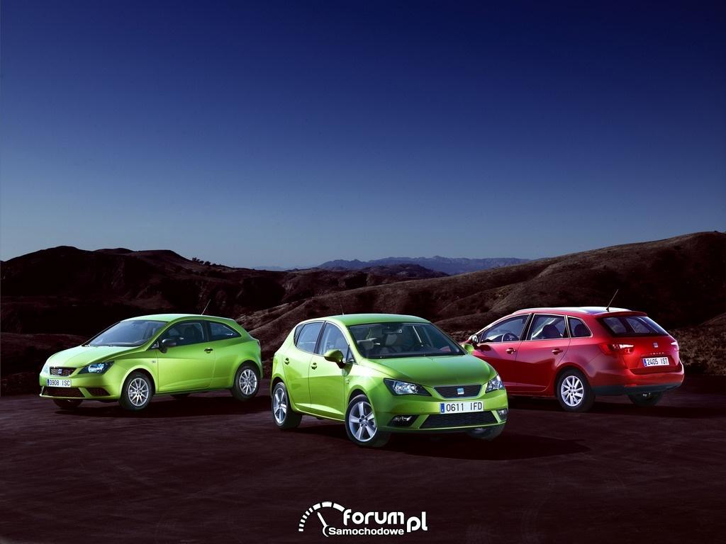 SEAT Ibiza 2012 3