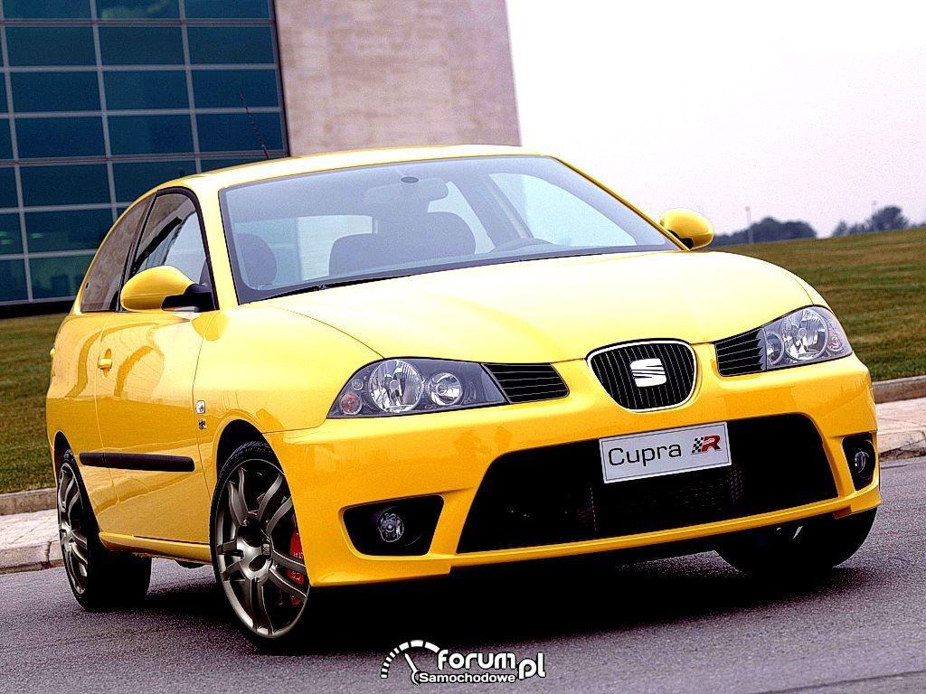 Seat Ibiza Cupra III