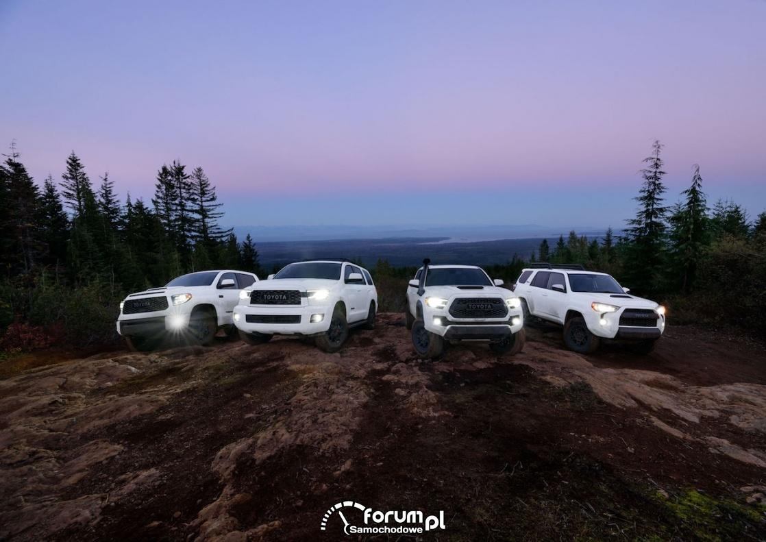 Toyota Family TRD PRO