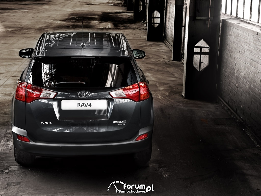 Toyota RAV4, tył, SUV