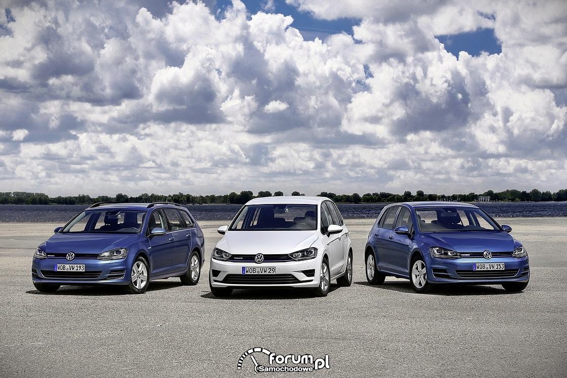 Trzy modele Golfa - Variant, Sportsvan i popularny Hatchback