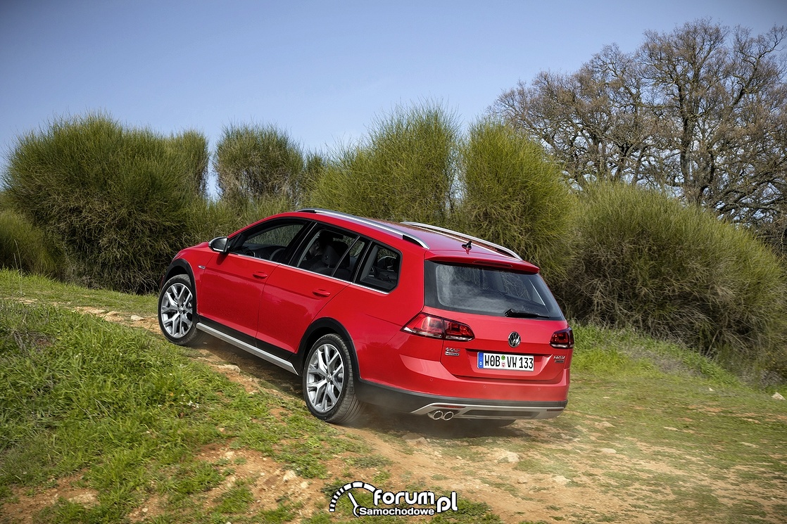 Volkswagen Golf Alltrack, tył