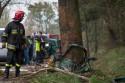 Drzewo na którym rozbił się samochód