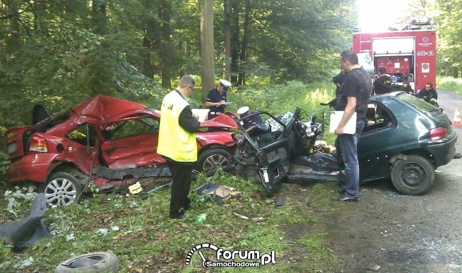 Zderzenie dwóch samochodów w lesie