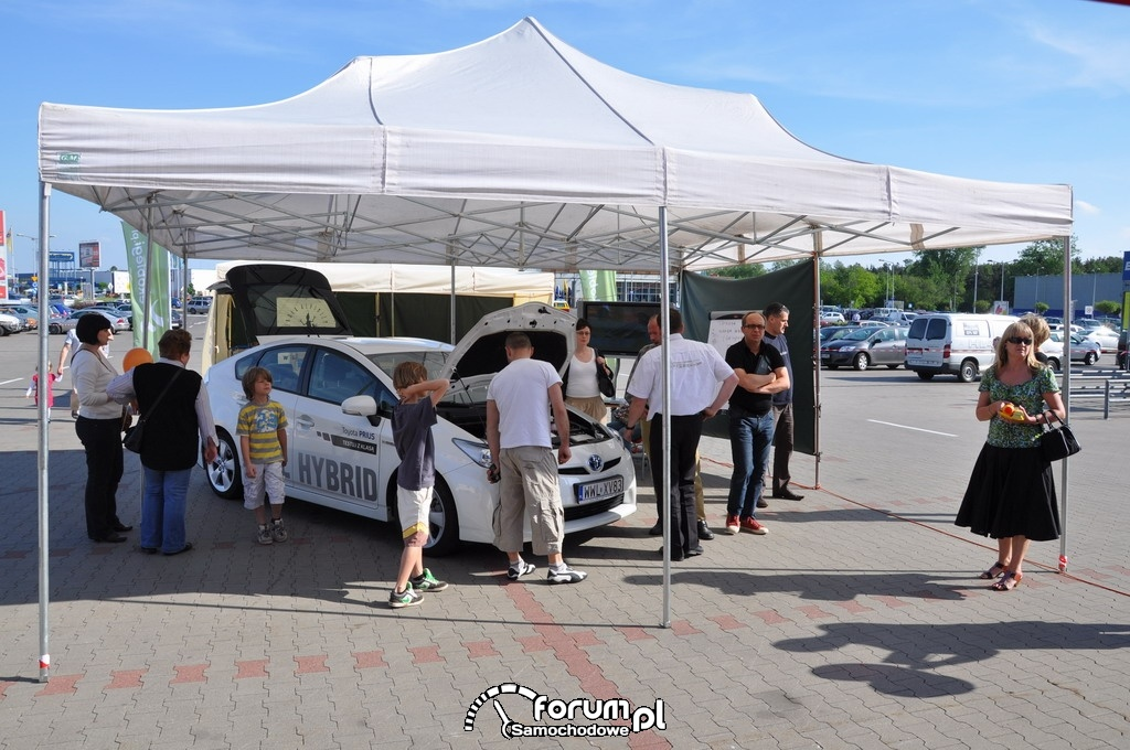 Ekobiegi - Toyota Prius i piknik IKEA