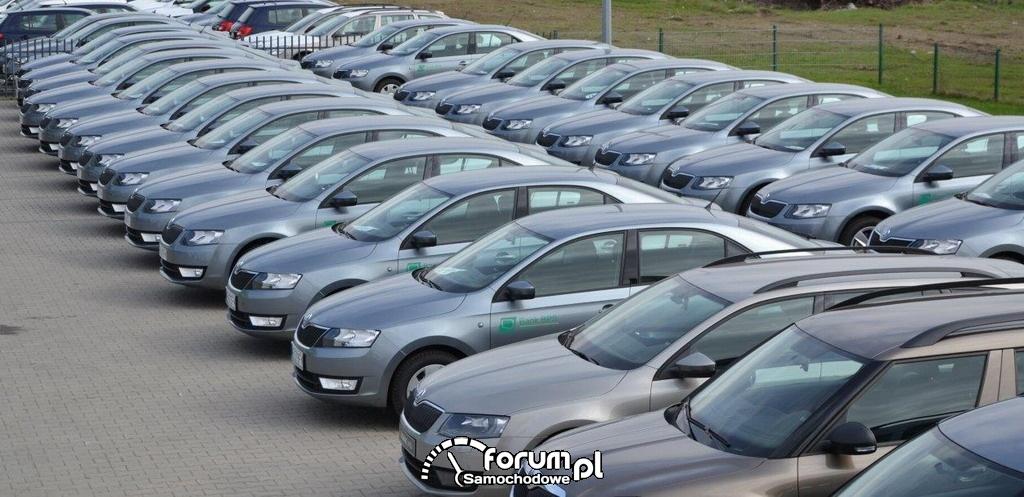 Flota samochodów Banku Polskiej Spółdzielczości S.A., Skoda Octavia