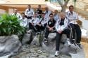 Kadra kierowców AUDI wytypowana do udziału w serii DTM 2012